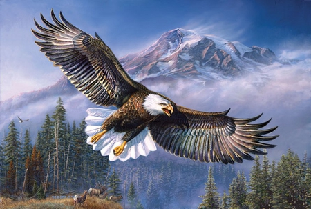 By James Meger * Bald eagle - james meger, free, painting, art, tree, animal, eagle, bird, fly, mountain
