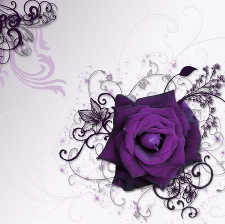 ☼Purple Dream Time Rose☼    4 Beth2shy - rose, flower, other, abstract, nature, fantasy