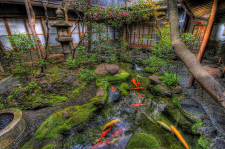 japanese garden koi tree flower peace statue garden