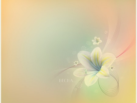 soft pastels - cool, milky, pastel, soft, tender, flower, nice, amasing, lily, colours