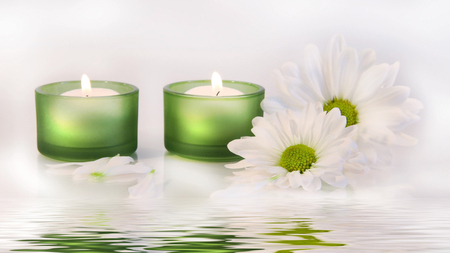 Candles and Daisies - green, daisies, candles, beautiful, white, reflection