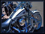Springer Softail