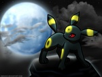 Umbreon under the Moonlight