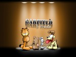 Garfield & friends