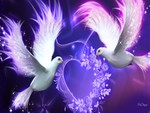 Valentine Purple Doves