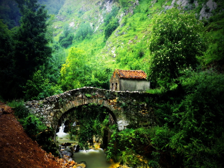 Old stone bridge - green, stone, trees, river, old, water, bridge, house, mountain, forest, nature, creek