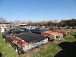 El Caminos Resting at The Little Valley Auto Ranch Belton Texas