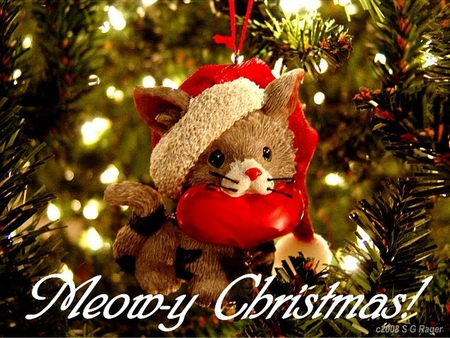 Cute Merry Christmas Wallpaper Cats And Happy New