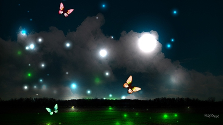 Night Lights - glow, trees, clouds, sky, horizon, butterflies, lights, bright