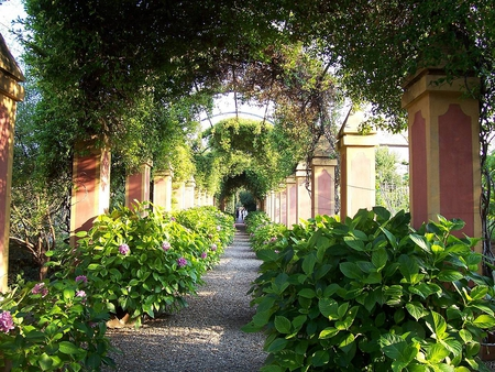 garden path - garden, villa, nature, path, houses