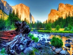 Beautiful Yosemite in HDR