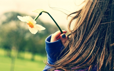 A Flower for You - field, woman, photography, daffodil, flower, nature, girl