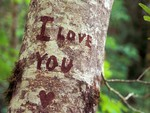 Love feelings on wood