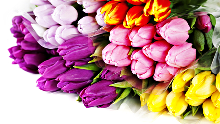 Colorful Tulips - flowers, spring, pink tulip, beautiful, pink, pretty, romantic, beauty, spring time, red tulips, yellow, yellow tulips, purple, red tulip, purple tulip, tulip, red, purple tulips, colorful tulips, colorful, colors, lovely, tulips, pink tulips, photography, yellow tulip, still life, nature, bouquet, romance
