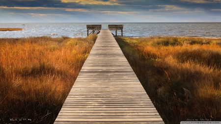 walk with me - grass, sea, pier, beach